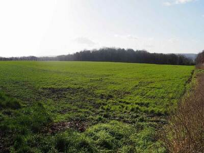 Vente Terrain 846m² Ponchon (60430) - photo