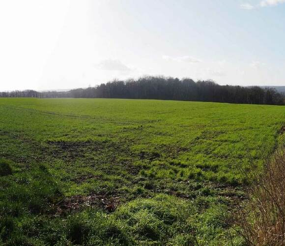 Vente Terrain 870m² Ponchon (60430) - photo